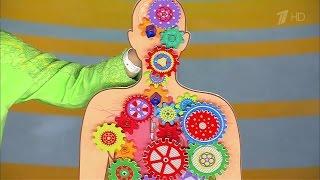 Продукты, повреждающие щитовидную железу.Жить здорово! (22.01.2016)