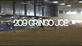Hat Brand / GF Buckers - Gringo Joe