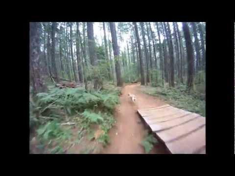 Black Rock Mountain Bike Park Sickter Gnar Trail Youtube