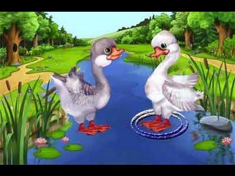 Два весёлых гуся - детская песня для малышей - YouTube