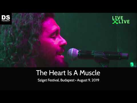Gang Of Youths - The Heart Is A Muscle - Sziget Festival, August 8, 2019