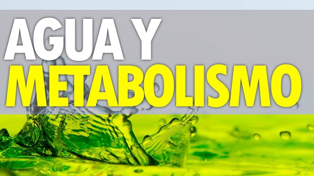 3 Tipos de metabolismo secretos que nunca supo