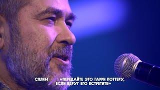 Александр Васильев – Передайте это Гарри Поттеру если вдруг его встретите НМДНИ-2020