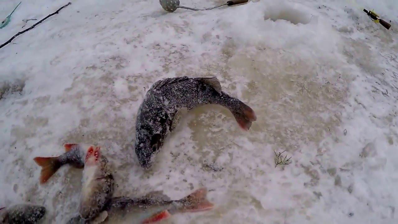 Зимняя рыбалка на реке хугот хмао