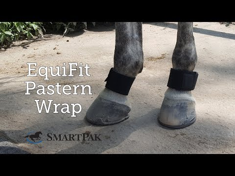 EquiFit Pastern Wrap Review
