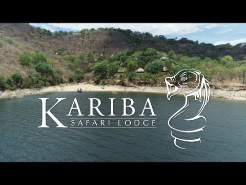 Kariba Safari Lodge - Zimbabwe