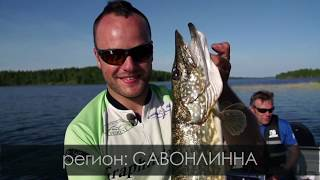 Finland. Fishing travel. Pike. Финляндия. Рыболовные путешествия. Щука.