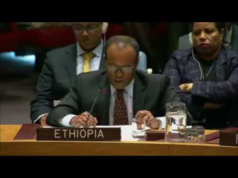UN Security Council extends Sanction on Eritrea