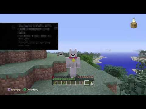Playing minecraft with my friend