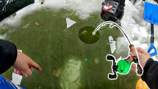 Catching BIG Fish through ULTRA-CLEAR Ice!!! (Pond Fishing)