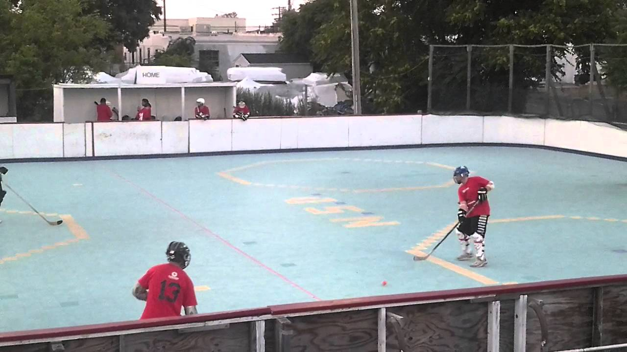 NS Dek Hockey League - Blood Brothers vs  Game Misconducts - 1st Period
