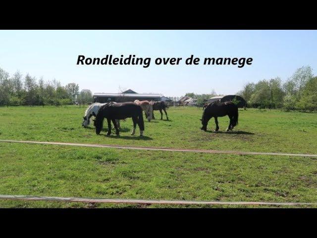 Stal van Brenk - RONDLEIDING