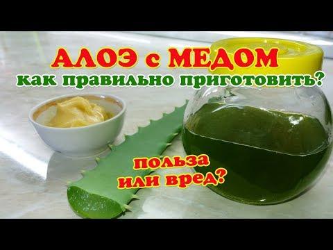 Как сделать лекарство алоэ с медом