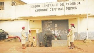 Breaking News! Over 1700 Anglophone Activists Held in Detention Centres in Yaounde!