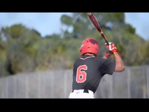 Brevard HEAT Baseball Team 2015