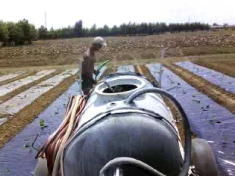 Irrigazione Zucchini Con Lamborghini E Botte