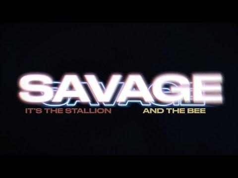 Megan Thee Stallion - Savage Remix (feat. Beyoncé) [Lyric Video]