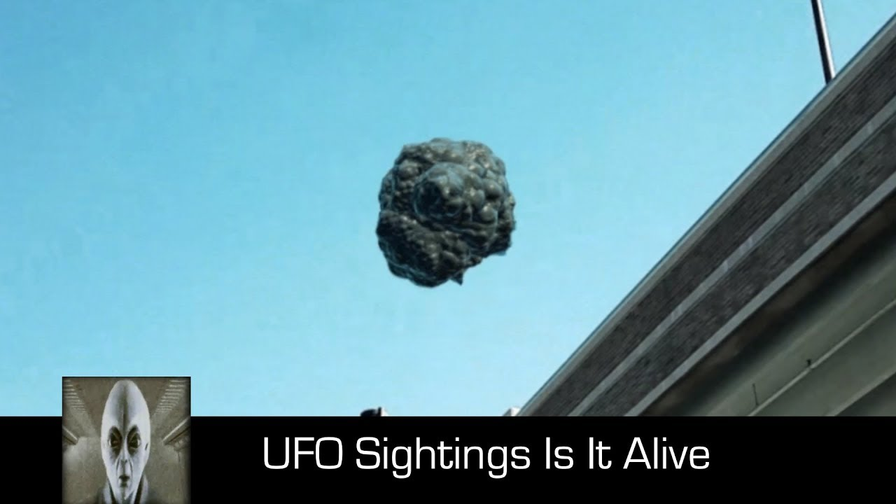 UFO Sightings Is It Alive October 10th 2017