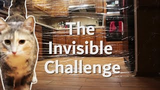Karma Kitty Reacts to the Invisible Challenge