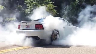 Best Mustang Pullouts/Burnouts & Drifting of 2019 | Mustang Wins Mustang Fails
