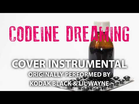 Codeine Dreaming (Cover Instrumental) [In the Style of Kodak Black & LIl Wayne]