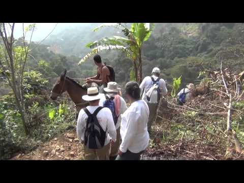 Caminata Guadalupe - Los Chorros - Patio Bonito - Teleférico