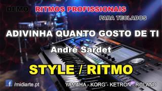 ♫ Ritmo / Style  - ADIVINHA QUANTO GOSTO DE TI - André Sardet