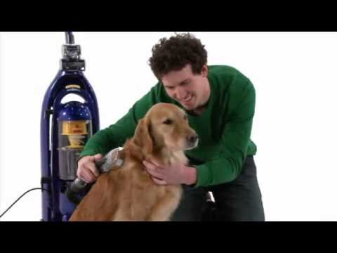 Dog Grooming Tips Youtube