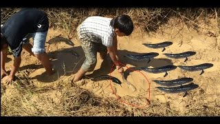 Amazing Two Brother Catch Net Fishing at Kompong Chhnang province - Cambodian Net fishing # 8