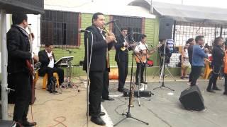 Grupo Etnia - Jilguero Flores