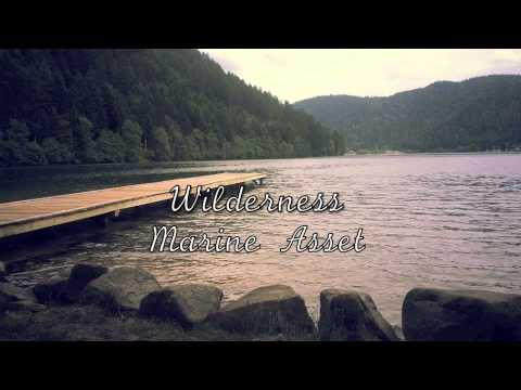 Wilderness - Cody Simpson (Marine Asset cover)