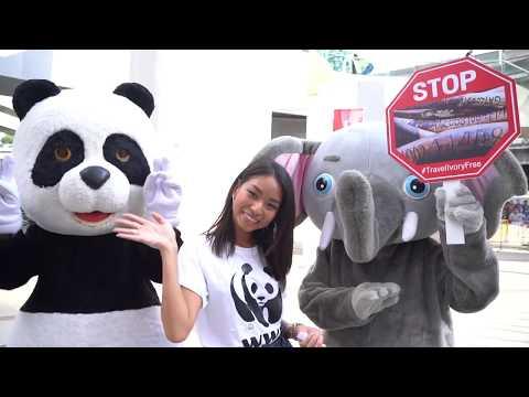 WWF-Thailand Travel Ivory Free Campaign
