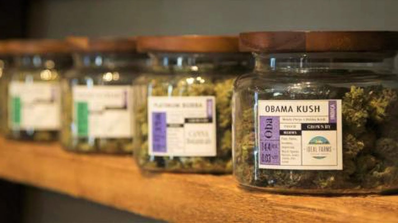 Colorado's First Black Woman Pot Entrepreneur on Edibles, Incarceration & the Industry'
