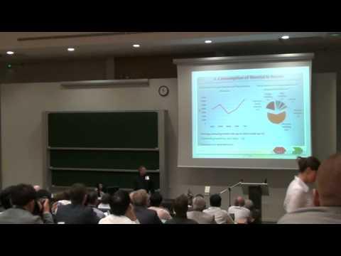 Выступление ООО СЦ Металл Маркет в Страсбурге.avi