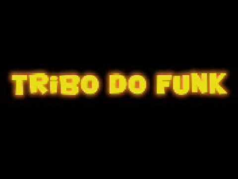 cd tribo do funk tudo mudou