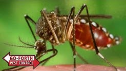 mosquitoes exterminators charlotte nc