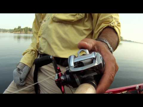 Bass Fishing Cedar Creek Lake Kentucky