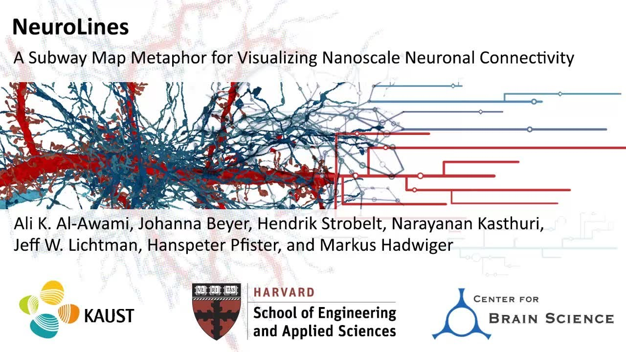 Subway Map Of The Brain.Vcg Harvard Neurolines A Subway Map Metaphor For Visualizing