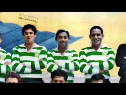 Pérides - Sporting CP