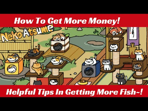 Tips And Tricks On How To Get Rich In Neko Atsume~! [The Anime Twins]