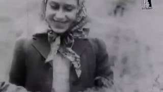 ТАЙНЫ КОРОЛЕВСКОЙ СЕМЬИ! Сексуальная Жизнь Королей. 02.01.2017