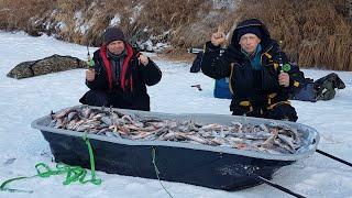 ДЖЕКПОТ НА ТАЁЖНОЙ РЕКЕ Зимняя рыбалка 2020 21