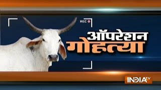 India TV sting exposes 2 major meat exporters in UP clandestinely selling beef
