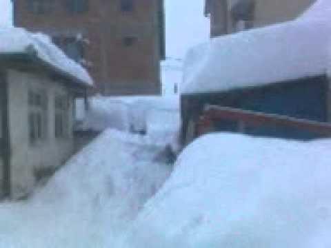 Snowshot Nabla