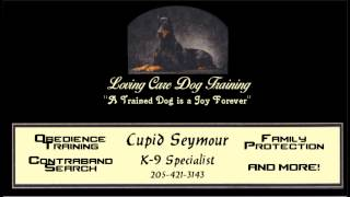 Dog Obedience Trainer - Birmingham, Al