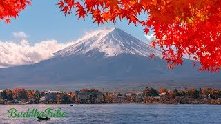 Music for Zen Relaxation, Japan Music, Best Instrumental Music, Music For Tai Chi