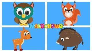 MALUCHOWO - Zwierzęta w lesie - Bajka dla dzieci 😍😍😍
