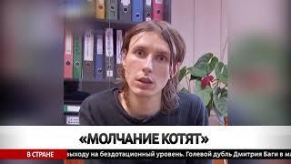Белорус жестоко расправлялся с котятами.