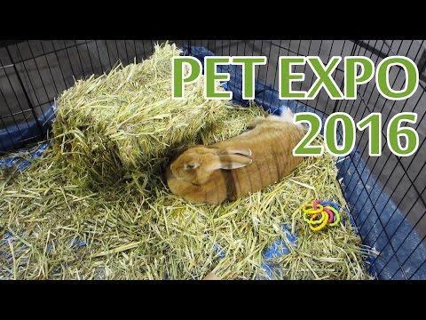 2016 Pet Expo