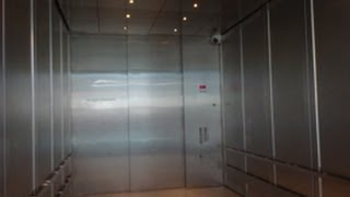 humongous thyssenkrupp traction freight elevator at museum of natural sciences in raleigh nc